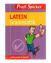 Latein Grammatik Profi Spicker Abitur