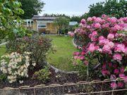 Sahnestück Pachtgarten Strandgarten mit Haus