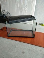 Ich verkaufe mein Aquarium von