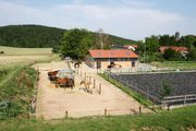 Pferdestall Pferdepension Bewegungsstall - Nähe Göttingen