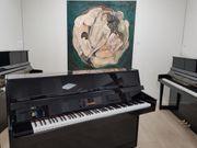 Schimmel Klavier -ausgezeichneter Zustand - Top Angebot