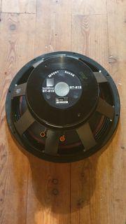 Meyer Sound ST 815