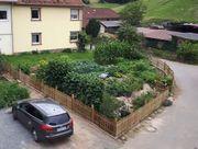 Endlich eigenes Gemüse Nutzgarten preiswert