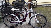 Damenfahrrad Bergamont City-Bike Belami N8