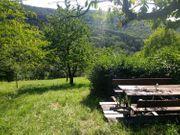 Hübsches Obstgartengrundstück Streuobstwiese in Schorndorf
