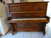 Klavier - Ackermann