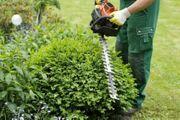 Gartenarbeit Gartenpflege Baumfällung Heckenschnitt Baumschnitt