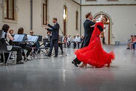 Vereine, Gruppen, Initiativen - Dresdner Orchester Akkamerata lädt ein