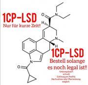 1CP-L S D Pappe mit