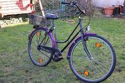 Campus Damen-Fahrrad 5-Gang Sachs Torpedo-Schaltung