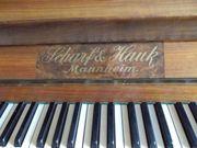 Klavier Scharf Hauk