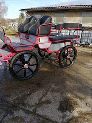 Kutsche Fahrschulwagen Trainingswagen