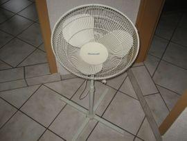 Bild 4 - Leistungsstarker Standventilator Ventilator Oszillierend 3-stufig - Birkenheide Feuerberg