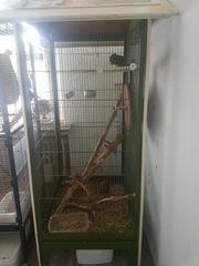streifenhörnchen mit käfig