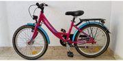 kinder Fahrrad Pegasus 20zoll