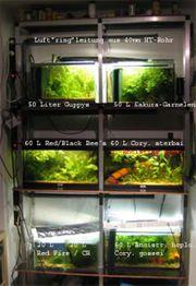 Aquariengestell Alu mit Einlageböden und