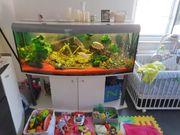 Panorama Aquarium ca 700l bitte