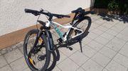 Damen-Mountain Bike Trek MARLIN 5