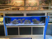Aquarium 250 60 60 12mm