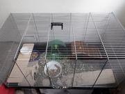 Mäusekäfig mit Zubehör