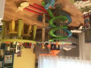 Autorennbahn Dino Action Tower von