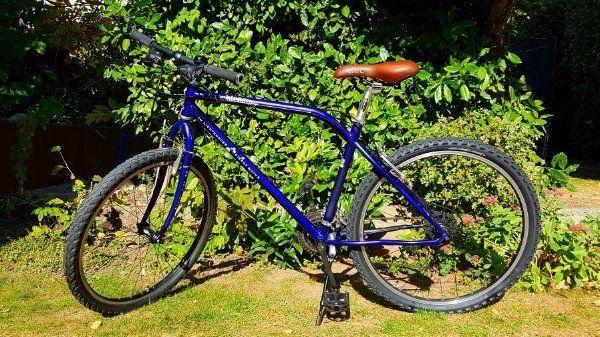 Damen Herren Fahrrad Hawk Cruiser