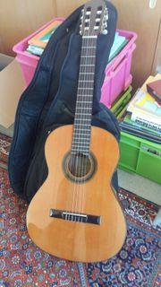 Gitarre Pro Natura Model Maline