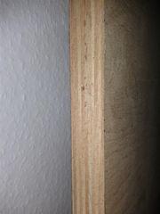 Buche Multiplex-Platte ca 1180 x