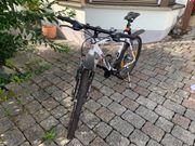Mountainbike- Herrenrad