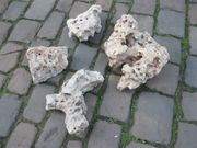 Aquarium- oder Terariumsteine