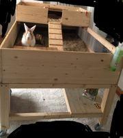 Großer Stall Meerschweinchen Kaninchen für