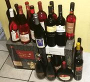 Wein 50 Flaschen