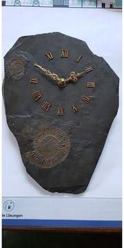 Quarz Wanduhr fosil