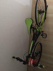 Kodiak Mountainbike mit Amazon Restgarantie