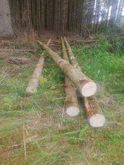 Fichtenholz Hochsitzbau