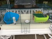 Kaninchen- Meerschweinchenstall