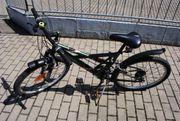 Quantum Cruser 24 Zoll Fahrrad