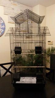 Brandneuer Vogelkäfig H 1 01