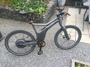 E-Bike Smart grau metallic