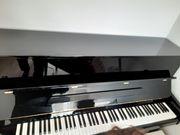 Klavier Ravenstein RV119 mit Silent-Funktion