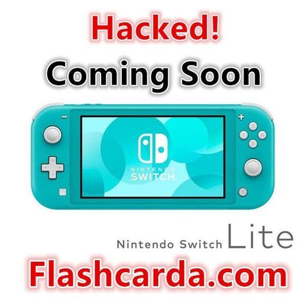 Switch Lite dongle