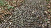 Altes Kopfsteinpflaster ca 10x10