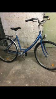 Damen oder Herren fahrrad