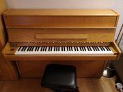 Samick Klavier Eiche hell