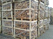 Brennholz reine Buche trocken