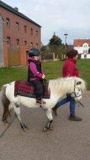 Ponyreiten Ponykutschfahrten Reiten geführt für