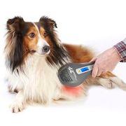 Laser-Therapie für Hunde und Katzen