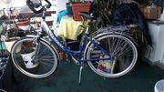 Damen Treckingfahrrad 28 Aluminium