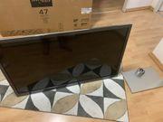 Panasonic Fernseher Defekt TX-L47ETW5