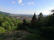 SUCHE GARTEN FREIZEITGRUNDSTÜCK in Heidelberg
